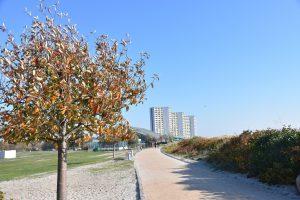 Strandpromenade Südstrand, im Hintergrund die IFA Türme