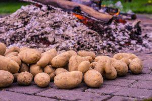 Ein Haufen Kartoffeln liegt vor einem Feuer