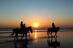Drei Pferde mit Reiter bei Sonnenuntergang am Meer