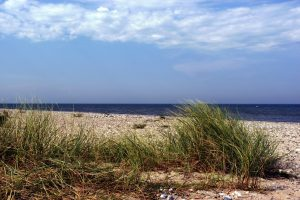 leerer Strand auf Fehmarn, blaues Meer