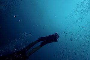 Beine mit Flossen eines Tauchers unter Wasser